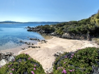 Offers Sardinia Month of June